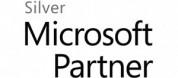 MS_Silver_logo.jpg